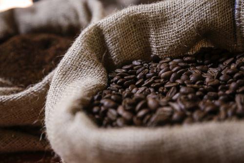 Cajamarca y otras regiones apuesta por el café de calidad.