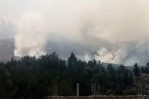Incendio forestal se originó en Moquegua y se extendió a zonas naturales de Arequipa.
