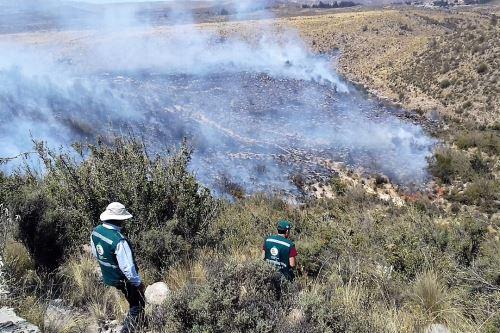 Brigadas conformadas por policías, miembros de las Fuerzas Armadas y civiles buscan sofocar incendio.