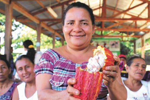 Más de 5,200 productores se beneficiarán con iniciativa que busca mejorar producción de cacao en San Martín.