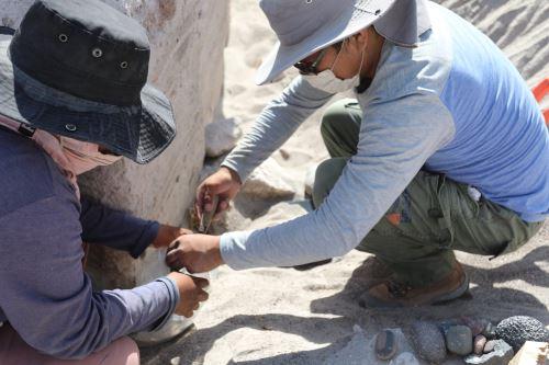 El equipo de investigación es integrado por arqueólogos de Perú y Polonia.