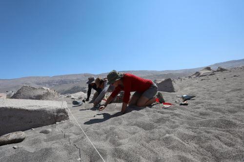 Investigadores realizan excavaciones arqueológicas en diferentes áreas de complejo Toro Muerto.