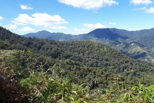 Bosques del Chaupe, Cunía y Chinchiquilla sería la primera área de conservación regional de Cajamarca.
