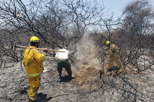 Tras 10 días de ardua labor se logró controlar al 100 % el incendio forestal en el Santuario Histórico Bosque de Pómac.