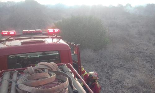 Reportado el incendio forestal en Salas, Indeci-Lambayeque coordinó con la Compañía de Bomberos B-149 del distrito de Íllimo.