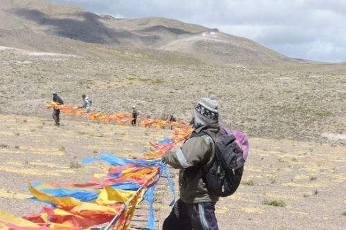 guardaparques y sus cuadrillas formaron un cordón humano para arrear a las vicuñas hacia los cercos de mallas en la comunidad campesina de Pampamarca, en la región Arequipa.