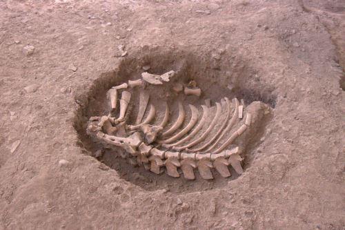 Los hallazgos corresponden a la época Formativa, unos 1,000 años antes de Cristo.