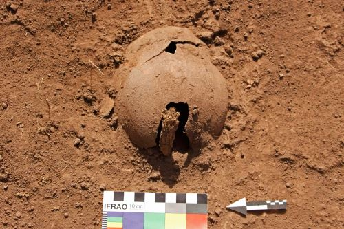 Las excavaciones descubrieron también fragmentos de cerámica decorada.