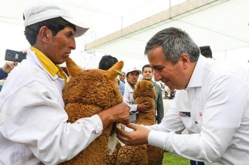El ministro Raúl Pérez-Reyes destacó que el Perú es el primer productor de fibra de alpaca en el mundo.