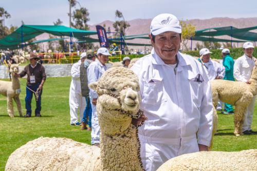 Agroideas aportó con maquinaria y equipos para mejorar la producción de alpaca.