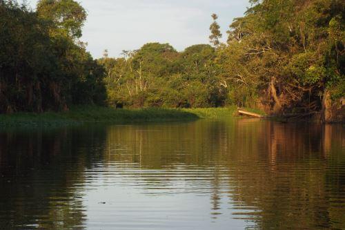 Por primera vez nuestro país ha iniciado un proceso tan importante como la zonificación forestal.