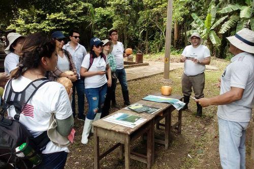 Es importante la participación de la población en la lucha contra la deforestación.
