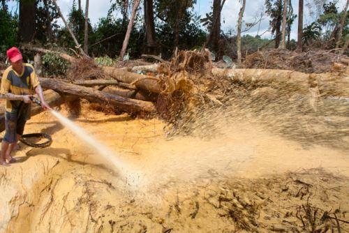 Minería ilegal ocasiona daños irreversibles en los ecosistemas selváticos.