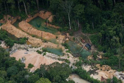Áreas protegidas son saqueadas por la minería ilegal, según estudio desarrollado en ecosistemas selváticos de seis países.