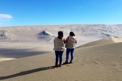 El Ministerio de Cultura desplegó arqueólogos y especialistas a lo largo de la ruta del Dakar 2019.