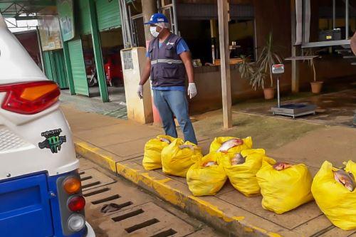 Pescado decomisado era transportado sin las condiciones sanitarias adecuadas.