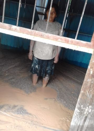 Familias perdieron sus pertenencias que fueron arrasadas por la crecida del río Huallaga.