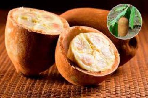 El copoazú es un fruto amazónico muy cotizado.