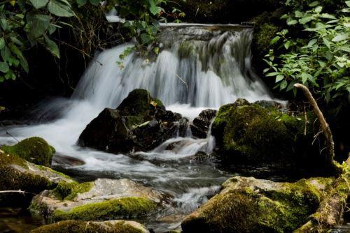 La quebrada Chorro Blanco forma parte del ACP Páramos y Bosques Montanos, Paraíso de la Comunidad Campesina San Felipe, en la región Cajamarca.