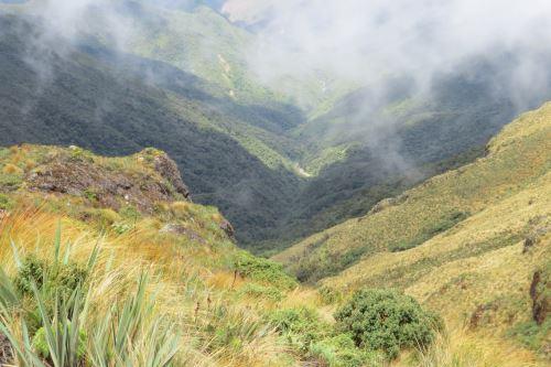 Vista panorámica del ACP Páramos y Bosques Montanos, Paraíso de la Comunidad Campesina San Felipe, en la región Cajamarca.