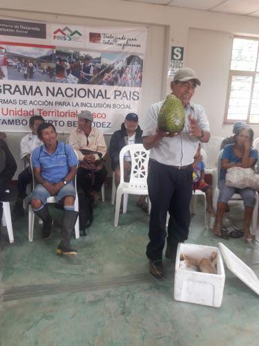 Fausto López impresiona a sus vecinos de Pasco con el cultivo de guanábana.