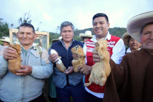 Héctor Marín Barboza, de Cajamarca, impulsa un negocio de crianza de cuy.