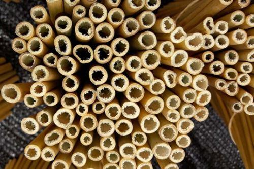 Agricultores de Monzón, región Huánuco, innovan con la elaboración de cañitas biodegradables de bambú.