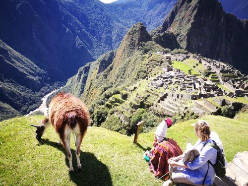 El Santuario Histórico de Machu Picchu fue creada como área natural protegida el 8 de enero de 1981.