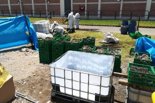 La empresa textil Inca Tops de Arequipa desarrolló tecnología para producir biogás y biofertilizantes a partir del uso de bacterias.