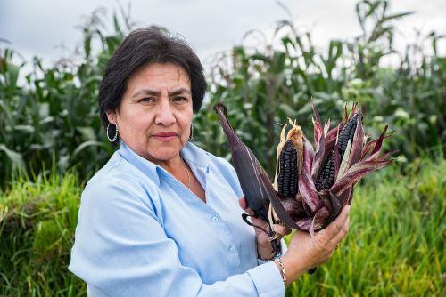Alicia Medina Hoyos es la especialista que dirige el equipo de investigación del Programa Nacional de Maíz del INIA.
