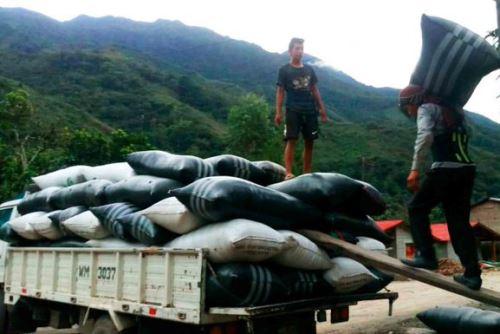 Con la asistencia técnica de Devida y Alianza Café, caficultores del valle del Monzón exportarán 53.7 toneladas de grano de café a Europa.