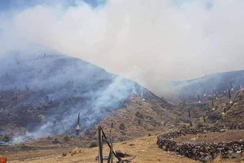 En la región Áncash se han reportado más de 50 incendios forestales provocados por la población.