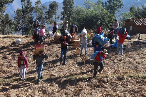 Las autoridades han dispuesto la evacuación de cinco familias del distrito de Yauya (Áncash) por activación de falla geológica.