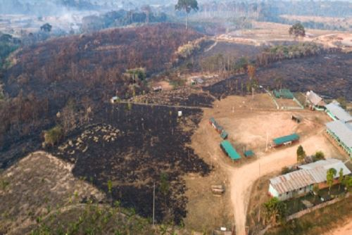 Perú reporta 128 incendios forestales en las últimas tres semanas