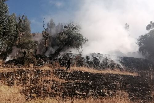 El COER Áncash reportó que, por lo menos, una hectárea de pastizales fue afectada por incendio forestal.