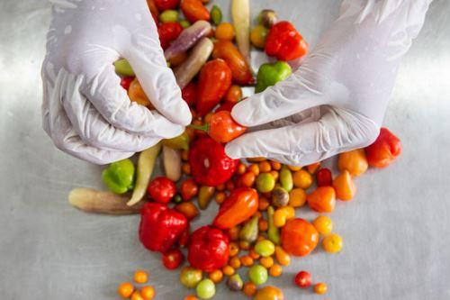 Gracias al reconocimiento de la gastronomía peruana, la oferta agroexportadora de ajíes y pimientos (Capsicum) se ha diversificado.
