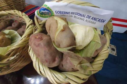 Más de 2,000 agricultores del distrito de Huayllabamba (Áncash) serán proveedores de empresa Inka Crops S.A.