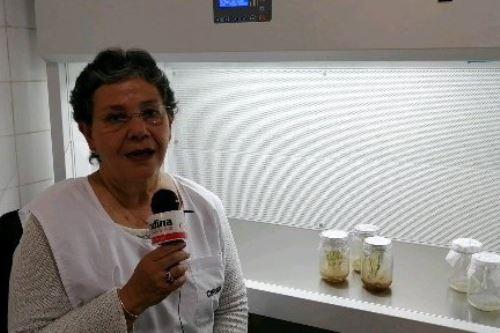 La bióloga Antonieta Gutiérrez encabeza el equipo de investigación de la UNALM.