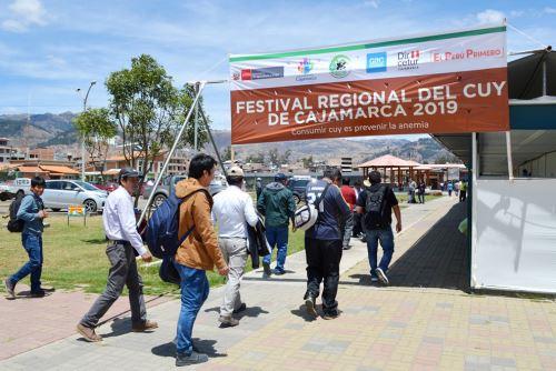 Productores de la Red de Productores de Cuy de Condebamba Alto participaron en el Festival Regional del Cuy de Cajamarca 2019.