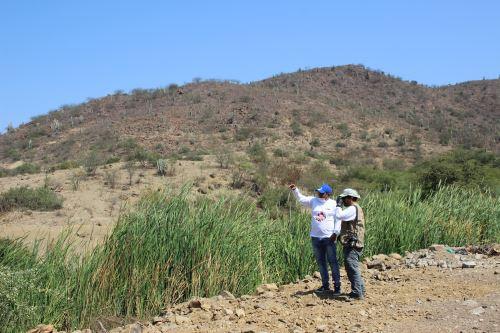 El cerro Mulato, el espacio patrimonial de arte rupestre más importante de la región Lambayeque, luce un nuevo rostro.