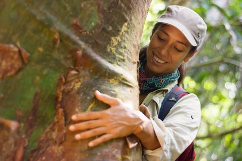 Tatiana Espinosa asumió el reto de preservar las especies de árboles más grandes de la Amazonía, como el shihuahuaco.