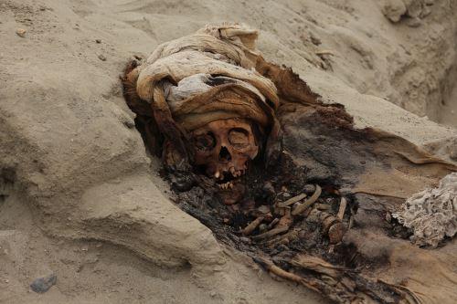Estos niños de la cultura Chimú habrían sido sacrificados entre los siglos XIII y XV.