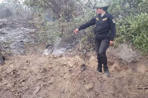 Un incendio forestal se registró en la jurisdicción de Palería, dentro del Santuario Histórico Bosque de Pómac.