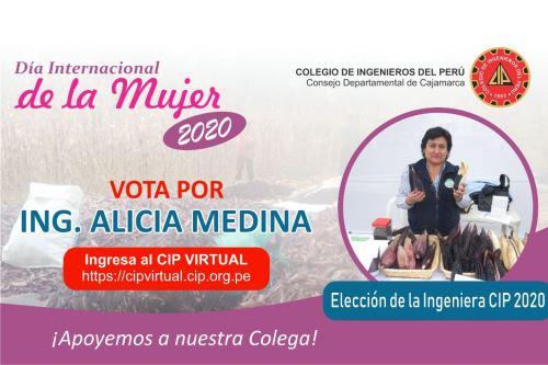 La investigadora cajamarquina Alicia Medina Hoyos ganó el concurso Ingeniera 2020, organizado por el Colegio de Ingenieros del Perú.