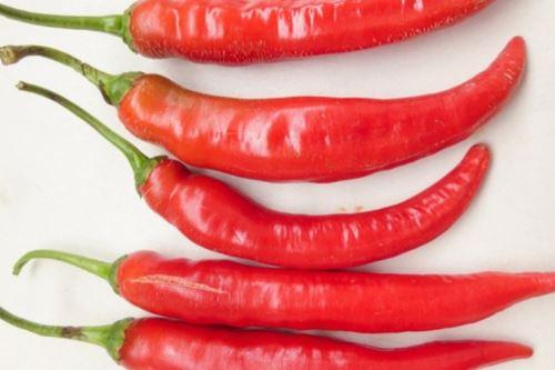 El Minagri identificó cinco variedades nativas de ajíes con buenas características de olor, sabor y picor ideales para la gastronomía.