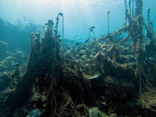 Contaminación de plásticos los océanos