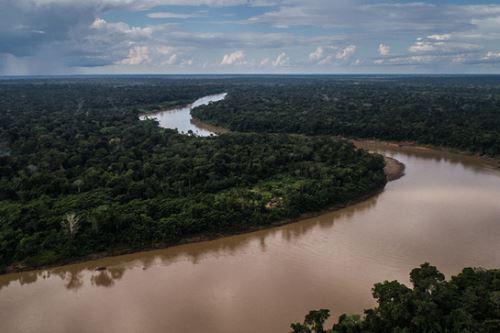 La reserva nacional Tambopata (Madre de Dios) tiene 274,690 hectáreas.