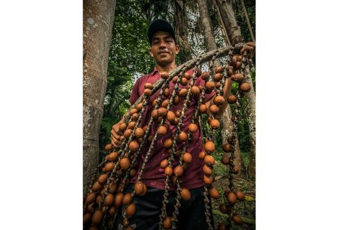 El Sernanp cautela la diversidad biológica y los servicios ecosistémicos que se generan en más del 19 % del territorio peruano.