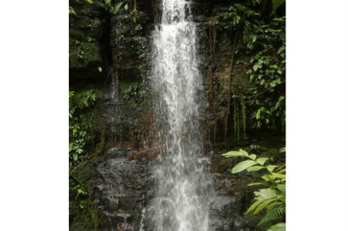 El ACP Potsom Posho´II presenta una serie de pequeñas quebradas de agua de manantial que desembocan en la quebrada Conazu.
