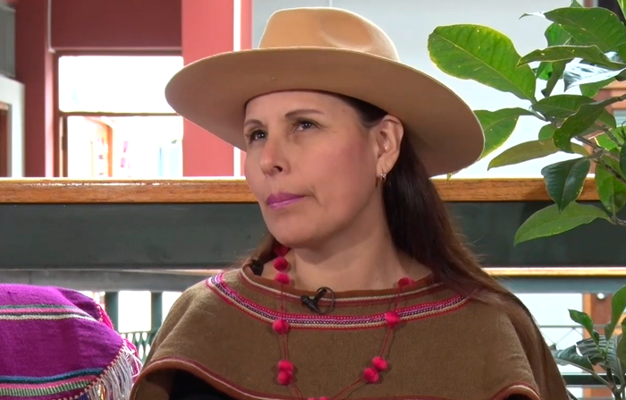 Entrevista a Nancy Manchego, intérprete de música andina